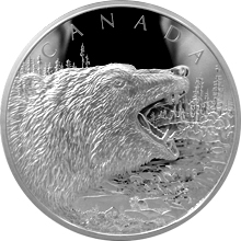 Stříbrná mince 500g Roaring Grizzly 2016 Proof (.9999)