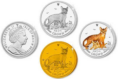 2010_Abyssinian_cat_coins