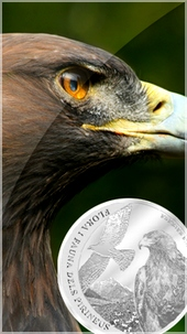 golden_eagle_silver_coin