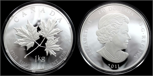 stribrna_mince_1kg_maple_leaf_forever_2011_proof