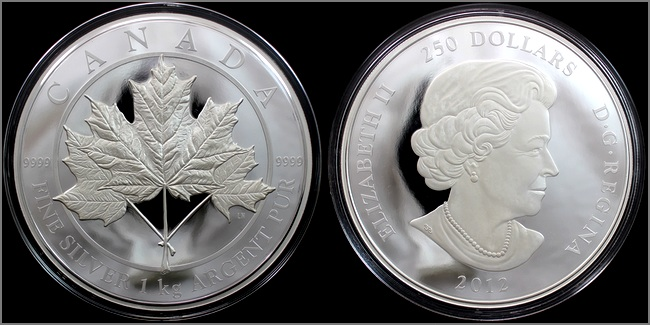 stribrna_mince_1kg_maple_leaf_forever_2012_proof