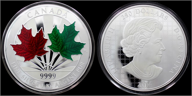 stribrna_mince_maple_leaf_forever_1kg_2014_proof